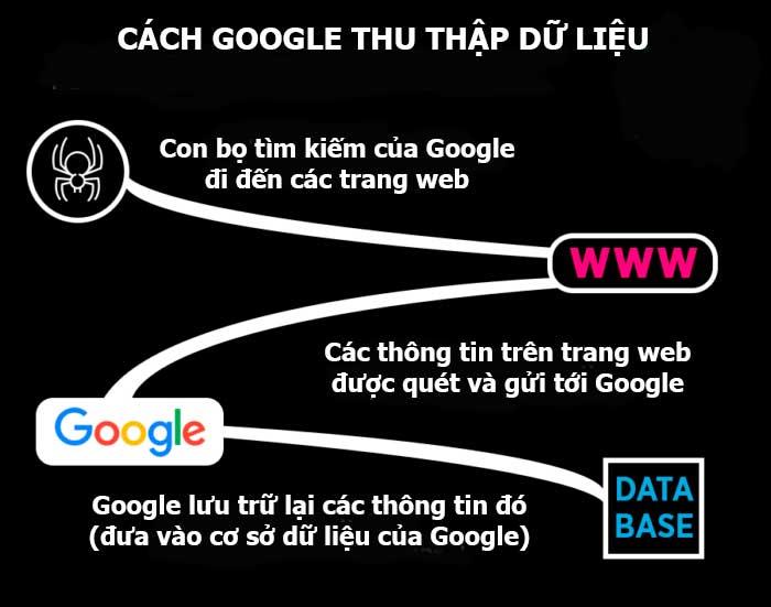 Cách Google thu thập dữ liệu